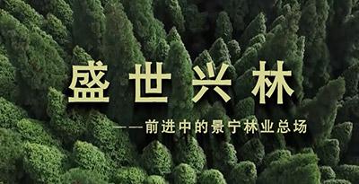 景宁畲族自治县林业总场