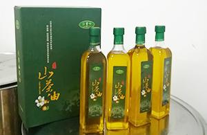 松阳沿背岭山茶油